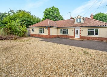 Thumbnail 3 bed detached bungalow for sale in Lower Globe Lane, Blofield, Norwich