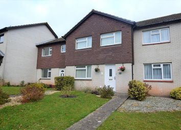 Thumbnail 3 bed terraced house for sale in Berry Road, Paignton, Devon