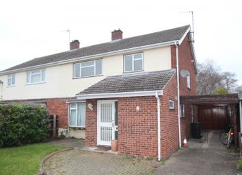 Thumbnail 4 bed semi-detached house to rent in Greystoke Road, Cherry Hinton, Cambridge