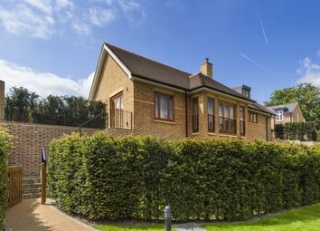 Thumbnail Detached house for sale in The Ridgeway, Mill Hill