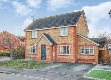 Thumbnail 4 bed detached house for sale in Raine Avenue, Haverhill