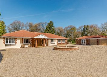 Thumbnail 4 bed bungalow for sale in Jennetts Close, Tutts Clump, Reading, Berkshire