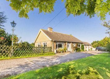 Thumbnail 3 bed equestrian property for sale in Burgess Green, Hacklinge, Deal