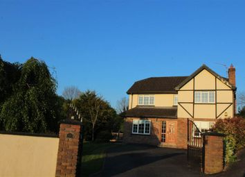 Thumbnail 4 bedroom detached house for sale in The Blackthorns, Monkshill, Newry