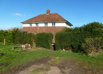 Thumbnail 3 bed semi-detached house for sale in Black Horse Drove, Littleport, Ely