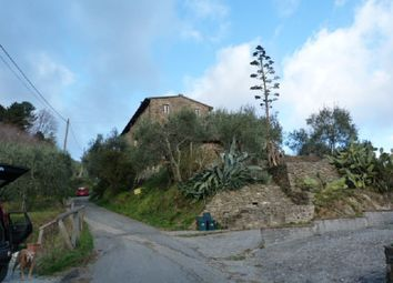 Thumbnail 3 bed country house for sale in Torre, Lucca (Town), Lucca, Tuscany, Italy