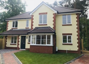 Thumbnail 4 bed detached house for sale in Sycamore Place, Wimborne