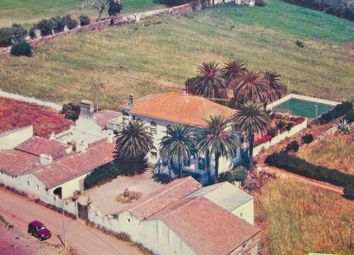 Thumbnail 7 bed country house for sale in Beja, 7800 Beja, Portugal