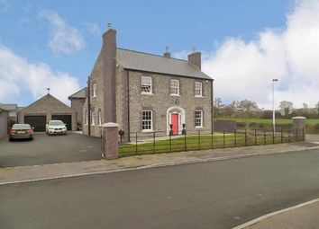Thumbnail 4 bed detached house for sale in 19 Farriers Green, Carnreagh, Hillsborough