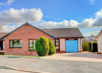 Thumbnail 2 bed bungalow for sale in Yarrow Avenue, Dumfries