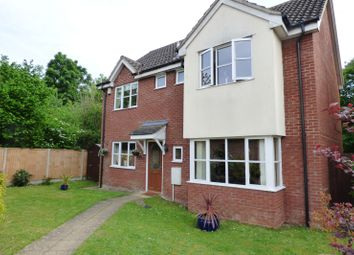 Thumbnail 4 bed detached house for sale in Chestnut Road, Tasburgh