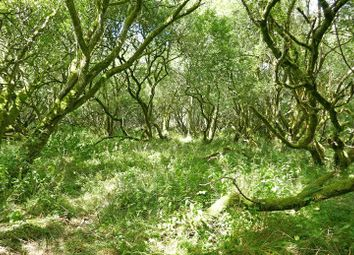 Thumbnail Land for sale in Clawton, Holsworthy