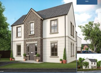 Thumbnail 3 bedroom semi-detached house for sale in Saintfield Road, Killinchy, Newtownards