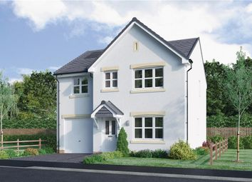 "Thumbnail 4 bed detached house for sale in ""Haig"" at Mcdonald Street, Dunfermline"