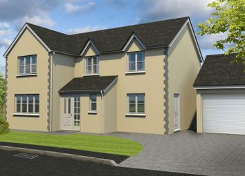 Thumbnail 4 bed detached house for sale in New Road, Bream, Lydney