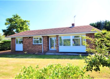Thumbnail 3 bed bungalow to rent in Lewson Street, Norton, Sittingbourne