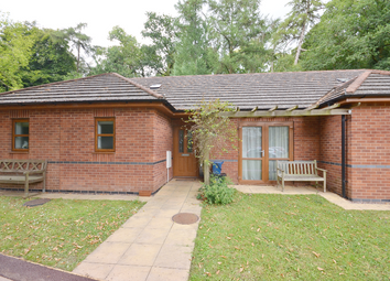 Thumbnail 1 bed bungalow for sale in 31 The Paddocks, Gittisham Hill Park, Honiton, Devon