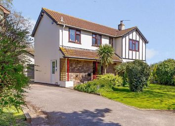 Thumbnail 4 bed detached house for sale in The Orchards, Netherend, Woolaston, Gloucestershire