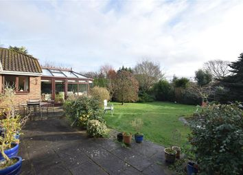 Thumbnail 3 bed bungalow for sale in Hill Farm Lane, Codmore Hill, West Sussex
