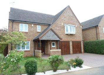 Thumbnail 5 bed detached house to rent in Burrough Way, Lutterworth