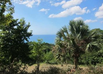 Thumbnail Land for sale in Negril, Westmoreland, Jamaica