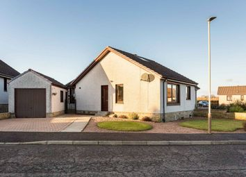 Thumbnail 3 bed semi-detached bungalow for sale in Gowan Rigg, Forfar, Angus