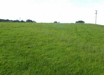 Thumbnail Farm for sale in Approx 6 Acres, Adjoining Aelybryn, Brechfa