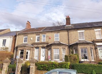 Thumbnail 2 bed terraced house for sale in The Steps, Mill Hill Road, Norwich
