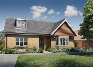 Thumbnail 4 bed detached bungalow for sale in Barford Road, Blunham, Bedford
