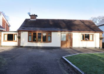 Thumbnail 3 bed bungalow for sale in Whittingham Lane, Whittingham, Preston