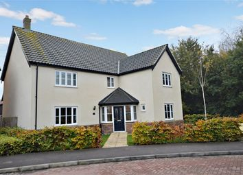 Thumbnail 4 bed detached house for sale in Victory Avenue, Poringland, Norwich