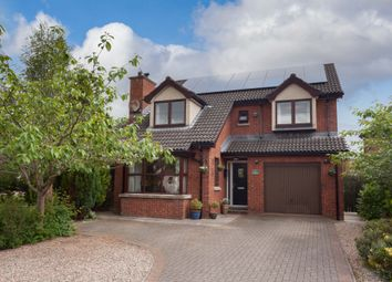 Thumbnail 4 bed detached house for sale in Meadow Lands, Antrim
