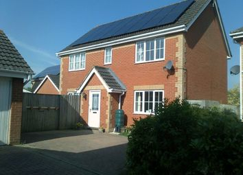 Thumbnail 4 bed detached house for sale in Riley Close, Ipswich