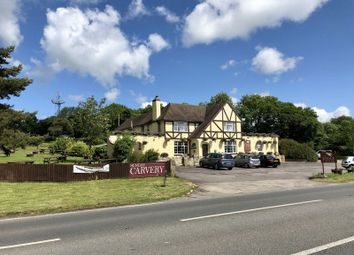 Pub/bar for sale in Buckland St. Mary, Chard TA20