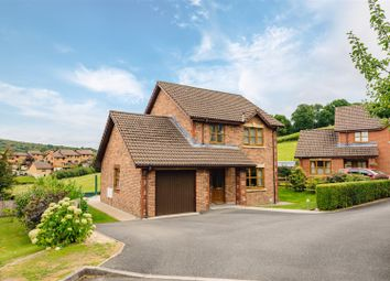 Thumbnail 3 bed detached house for sale in Tyle Heulog, Builth Wells