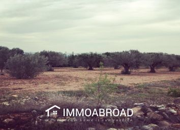 Thumbnail Land for sale in 46389 Turís, Valencia, Spain