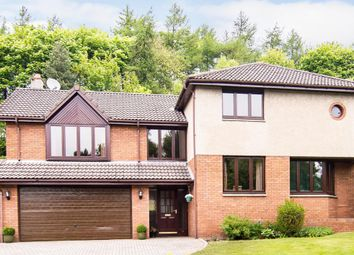 Thumbnail 5 bed detached house for sale in Mount Frost Place, Markinch, Glenrothes