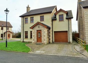 Thumbnail 4 bed detached house for sale in James Lodge, Derrymore Road, Aghalee, Craigavon