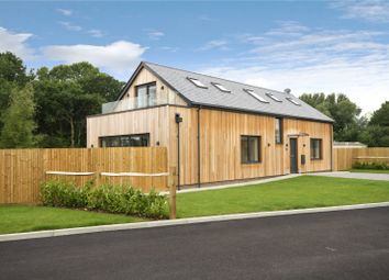 Thumbnail 4 bed detached house for sale in Hare Lane, Lingfield