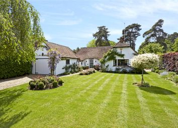 Thumbnail 2 bed detached bungalow for sale in Sandpit Hall Road, Chobham, Surrey