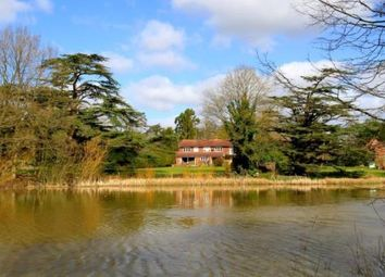Thumbnail 4 bed detached house for sale in Loxwood, Billingshurst, West Sussex