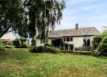 Thumbnail 3 bed detached bungalow for sale in Hawkchurch, Axminster, Devon