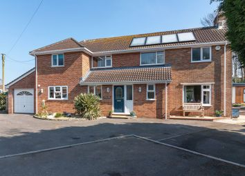 Thumbnail 4 bed detached house for sale in Lyddons Mead, Chard