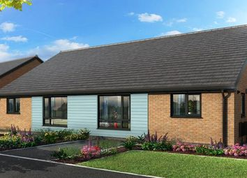 "Thumbnail 2 bed bungalow for sale in ""The Bibury At Yew Gardens, Edlington "" at Broomhouse Lane, Edlington, Doncaster"