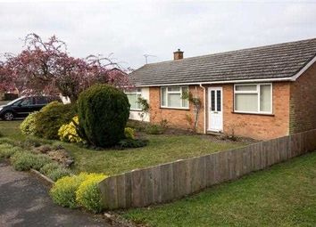 Thumbnail 3 bedroom bungalow to rent in Penryn Road, Kesgrave, Ipswich
