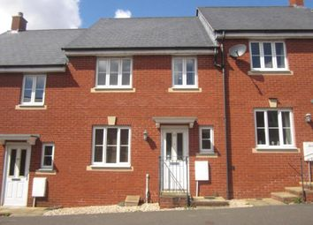 Thumbnail Terraced house for sale in Bathern Road, Exeter, Devon