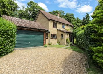 Thumbnail 4 bed detached house for sale in Old Hall Close, Trowse