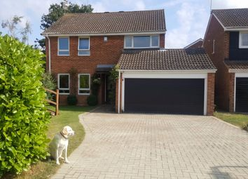 Thumbnail 4 bed detached house to rent in Whinhams Way, Essex