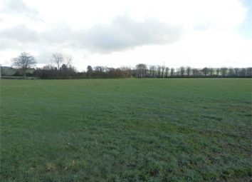 Thumbnail Land for sale in Brynog, Felinfach, Lampeter, Ceredigion