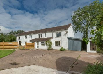 Thumbnail 3 bed semi-detached house to rent in North Tawton